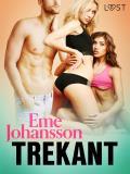 Cover for Trekant - erotisk novell