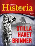 Cover for Stilla havet brinner