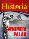 Cover for Tyynimeri palaa