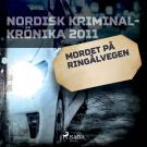 Cover for Mordet på Ringålvegen