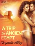 Cover for A Trip To Ancient Egypt – Erotic Short Story