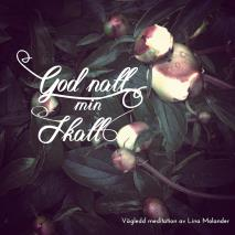 Cover for God natt min skatt
