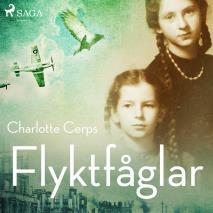 Cover for Flyktfåglar
