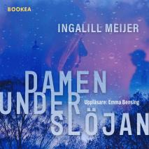 Cover for Damen under slöjan