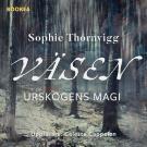 Cover for Väsen