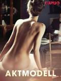 Cover for Aktmodell