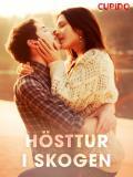 Cover for Hösttur i skogen