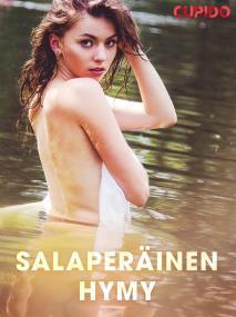 Cover for Salaperäinen hymy