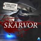 Cover for Skärvor