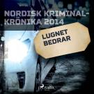 Cover for Lugnet bedrar