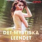 Cover for Det mystiska leendet
