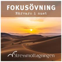 Cover for Fokusövning – Närvaro i nuet