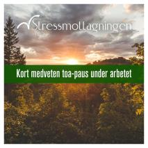 Cover for Kort medveten toa-paus under arbetet