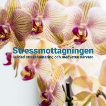 Cover for Mindfulness: Guidad stresshantering och medveten närvaro
