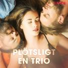 Cover for Plötsligt en trio