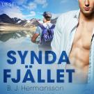 Cover for Syndafjället - erotisk novell
