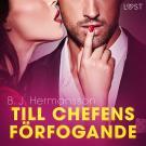Cover for Till chefens förfogande - erotisk novell