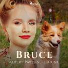 Cover for Bruce