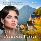 Cover for The Princess Passes