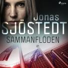 Cover for Sammanflöden