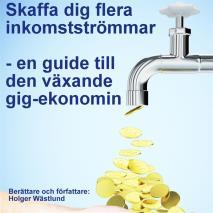 Cover for Skaffa dig flera inkomstströmmar