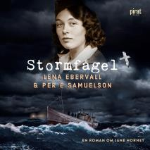 Cover for Stormfågel