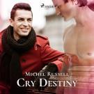 Cover for Cry Destiny