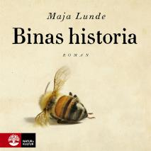 Cover for Binas historia