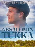 Cover for Absalomin tukka
