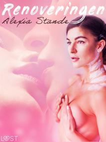 Cover for Renoveringen - erotisk novell