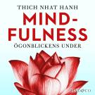 Cover for Mindfulness: Ögonblickens under