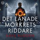 Cover for Det lånade mörkrets riddare