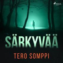 Cover for Särkyvää