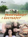 Cover for Ponnygänget i ödetorpet