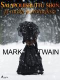 Cover for Salapoliisijuttu sekin ja muita kertomuksia