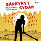 Cover for Särkynyt sydän