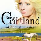 Cover for Amor puuttuu asiaan