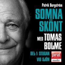 Cover for SOMNA SKÖNT Stugan vid sjön