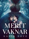 Cover for Merit vaknar
