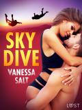 Cover for Skydive - Erotic Short Story
