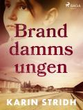 Cover for Branddammsungen