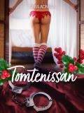 Cover for Tomtenissan - erotisk novell