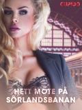 Cover for Hett möte på Sörlandsbanan - erotiska noveller