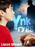 Cover for Ynkrygg