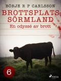Cover for Brottsplats Sörmland.6, En odyssé av brott