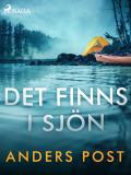 Cover for Det finns i sjön