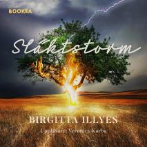 Cover for Släktstorm