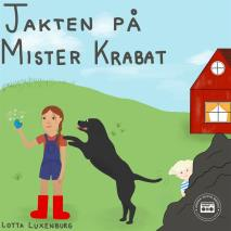 Cover for Jakten på Mister Krabat