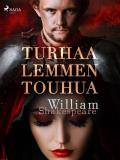 Cover for Turhaa lemmen touhua