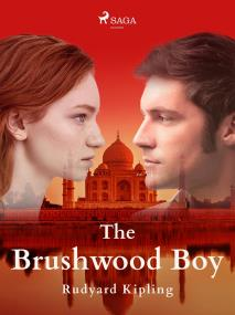 Cover for The Brushwood Boy